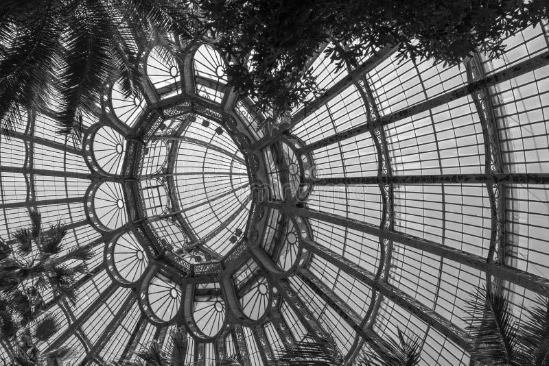 Het indrukwekkende overkoepelde plafond van Wintergarden, een deel van de Koninklijke Serres in Laeken, Brussel, Belgi? stock afbeelding