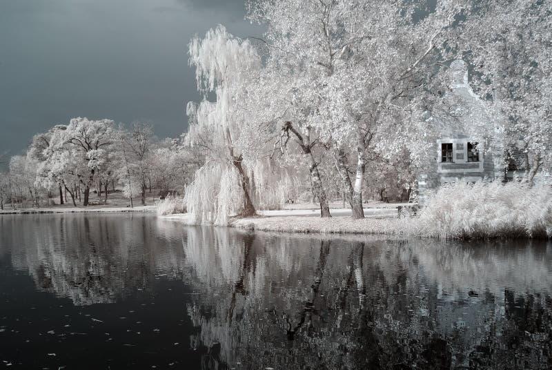Het infrarode meer van Duotone stock foto's