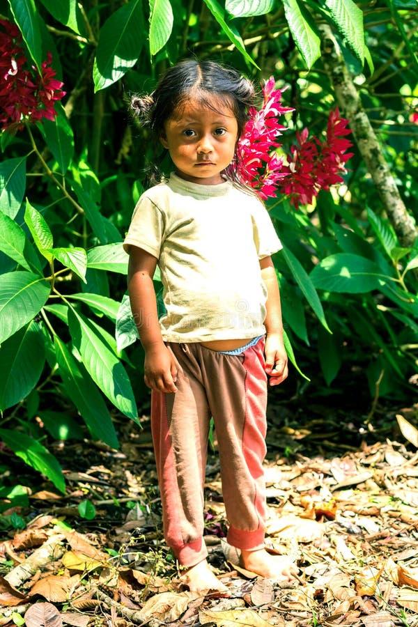 Het inheemse Meisje Kijken royalty-vrije stock afbeeldingen