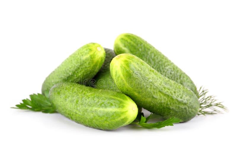 Het inleggen van komkommers met peterselie, dille, kruiden stock afbeeldingen