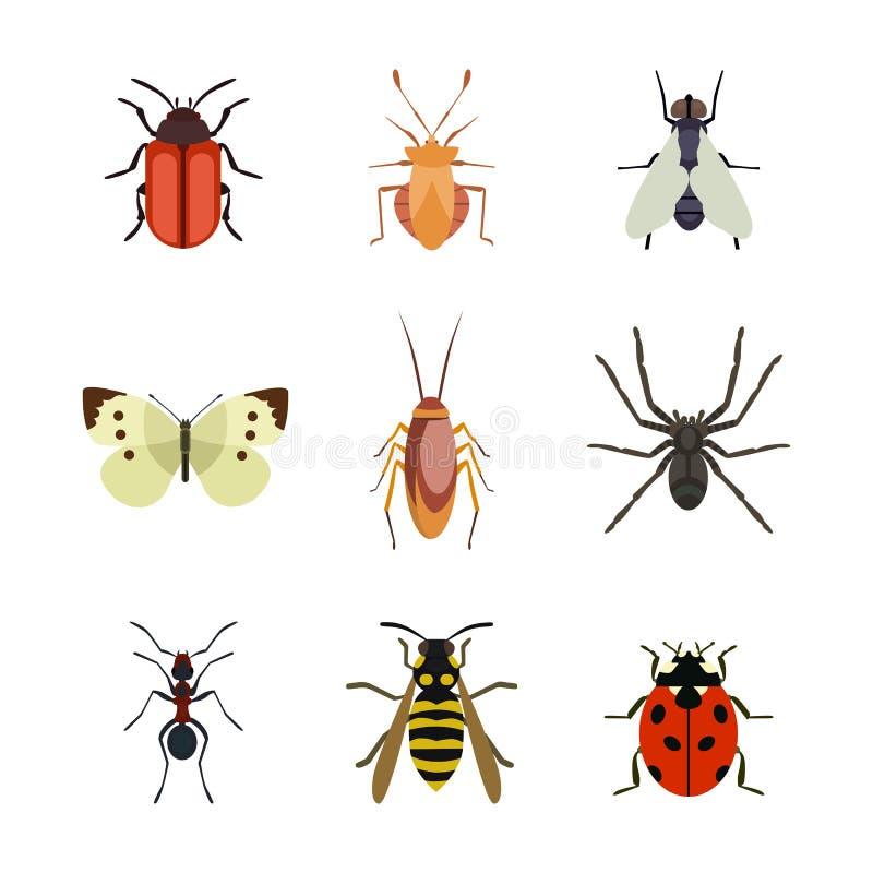 Het insectpictogram isoleerde de kevermier van de aard vlak vliegende vlinder en van de het wildspin sprinkhaan of mugkakkerlak royalty-vrije illustratie