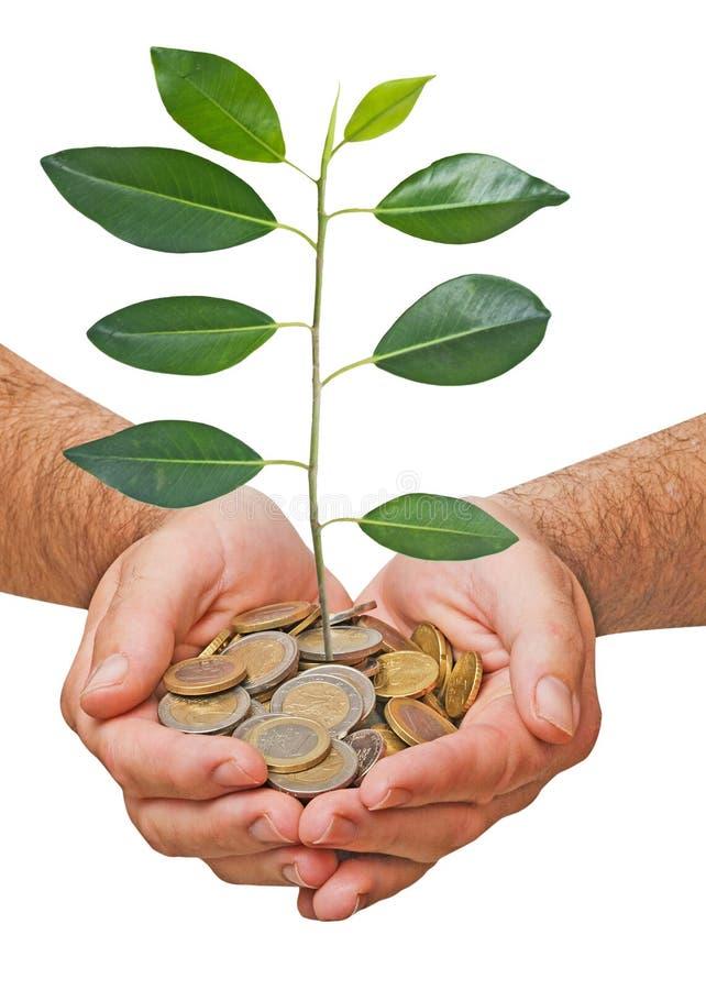 Het investeren aan groene zaken stock afbeeldingen