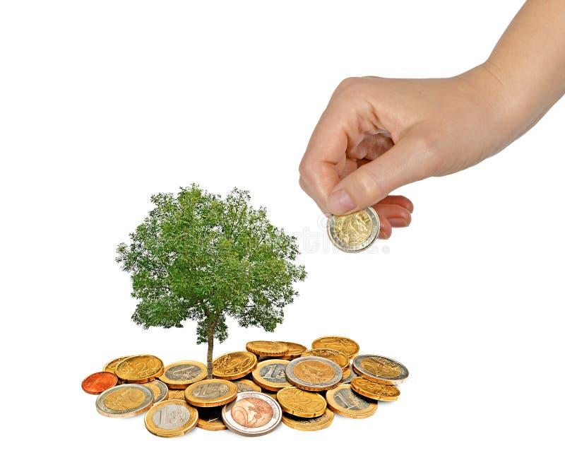 Het investeren aan groene zaken royalty-vrije stock foto's