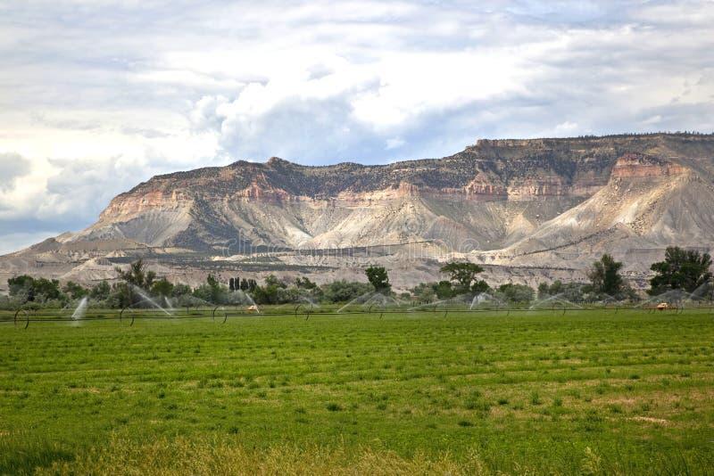 Het Irrigeren van de sproeier Landbouwgrond bij het Dal van het Kasteel, Utah stock afbeelding
