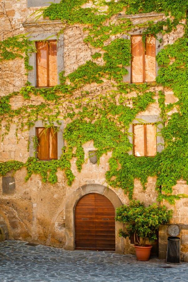 Het Italiaanse Huis met Wijnstok behandelde Voorzijde royalty-vrije stock foto's