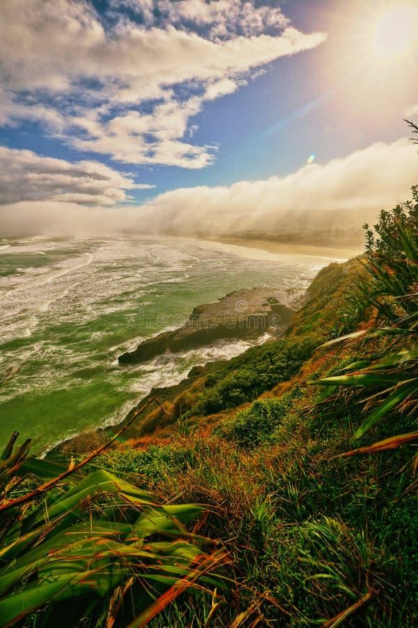 Het Jan-van-gentkolonie Auckland van het Muriwaistrand royalty-vrije stock foto