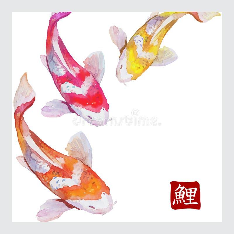 Het Japanse koi van waterverfkarpers zwemmen royalty-vrije stock afbeelding