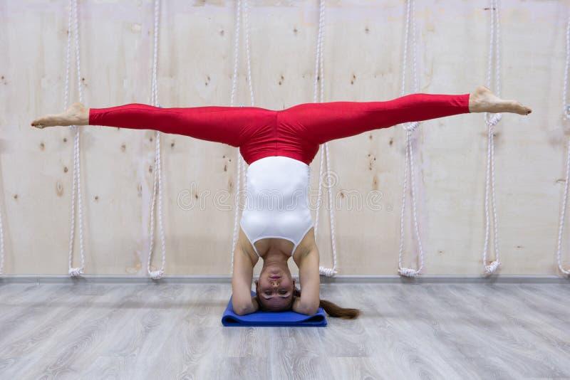 Het jonge aantrekkelijke yogivrouw het praktizeren yogaconcept, die zich in variatie van de oefening van Pincha Mayurasana, hands stock afbeelding