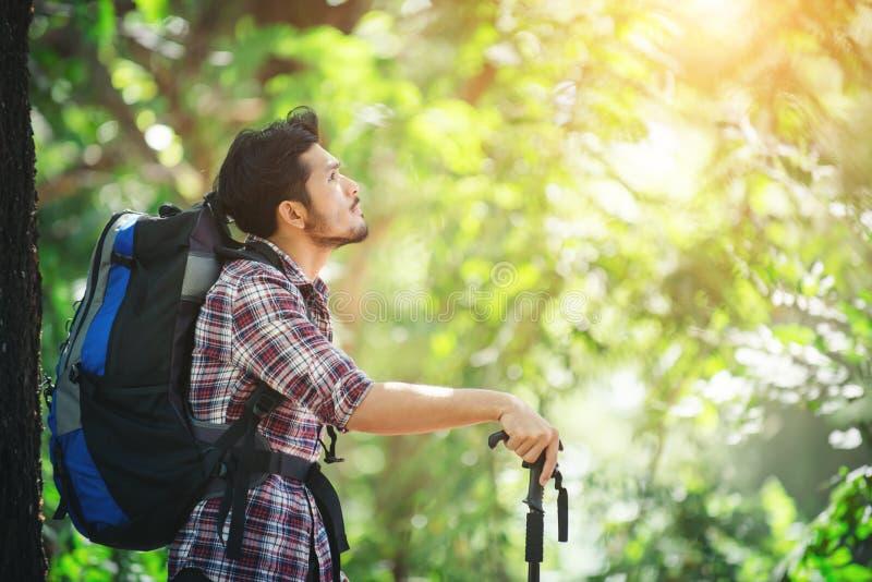 Het jonge einde van de wandelaarmens voor een rust tijdens het bekijken bomenarou stock fotografie