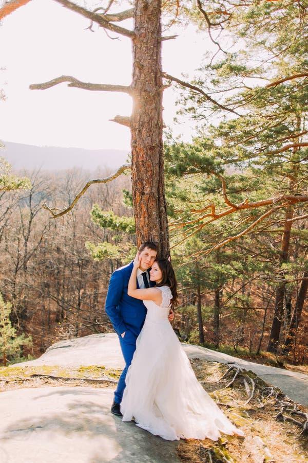 Het jonge enkel echtpaar stellen onder pijnboomboom Prachtig berglandschap als backround stock afbeelding