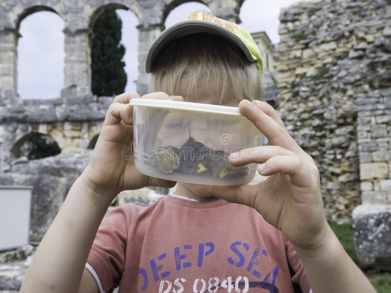 Het jonge geitje met slakken kan binnen Clouse omhoog royalty-vrije stock fotografie