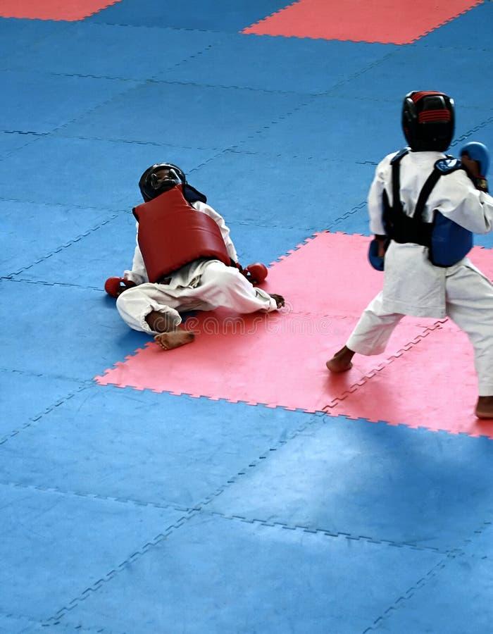 Het jonge geitje van de karate stock foto