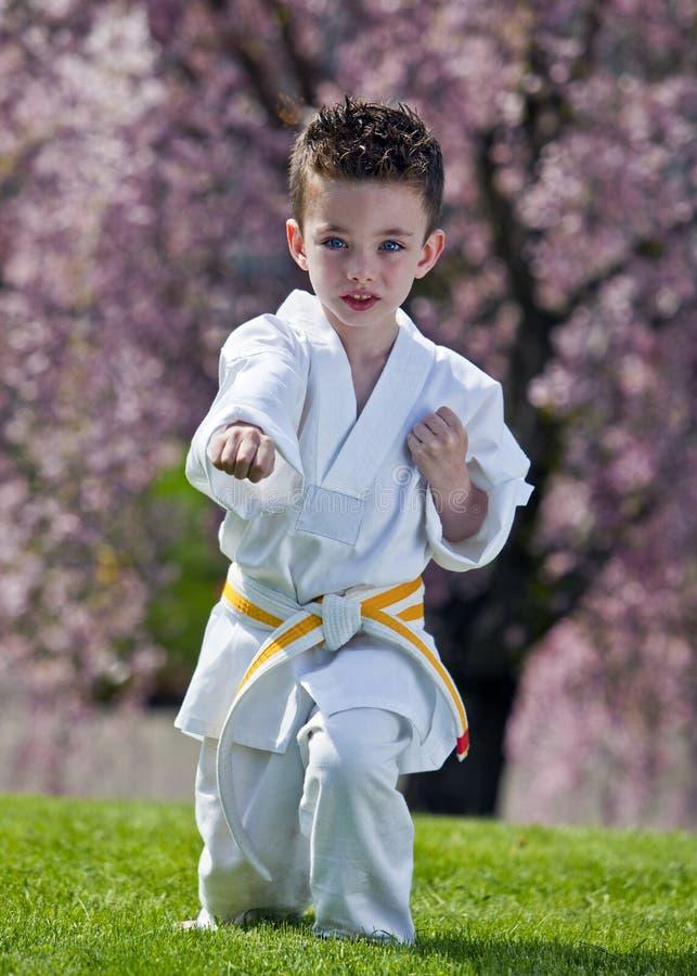 Het jonge geitje van de karate royalty-vrije stock foto