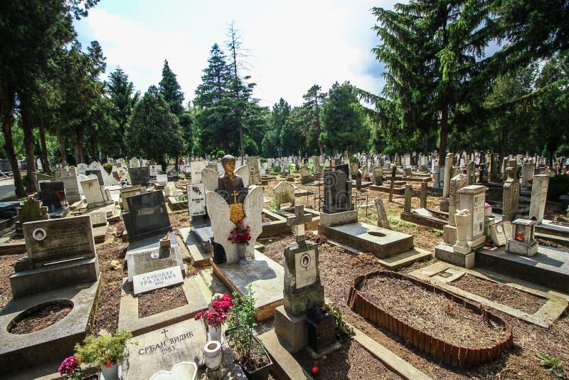 Het Jonge geitjebegraafplaats van Belgrado royalty-vrije stock foto's