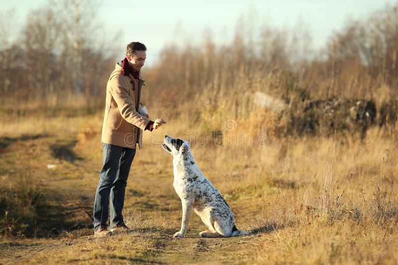 Het jonge gelukkige Europese glimlachen en het lachen lopen op een gebied met een grote witte hond stock afbeeldingen
