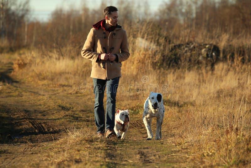 Het jonge gelukkige Europese glimlachen en het lachen lopen op een gebied met twee honden stock afbeeldingen