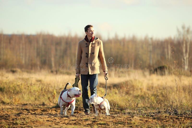 Het jonge gelukkige Europese glimlachen en het lachen lopen op een gebied met twee honden stock foto's