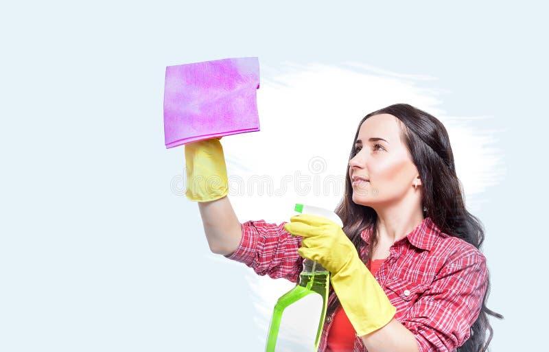 Het jonge gelukkige huisvrouw schoonmaken stock afbeeldingen