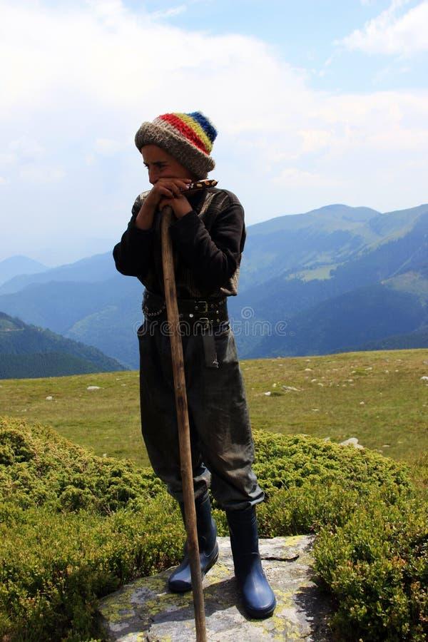 Het jonge herder rusten royalty-vrije stock afbeeldingen