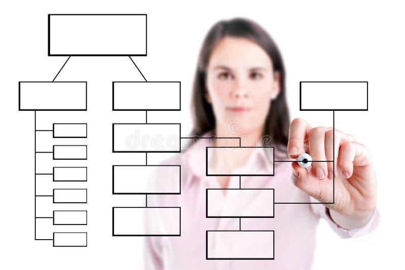 Het jonge het bedrijfsvrouw schrijven diagram van het processtroomschema op het geïsoleerde scherm. stock foto