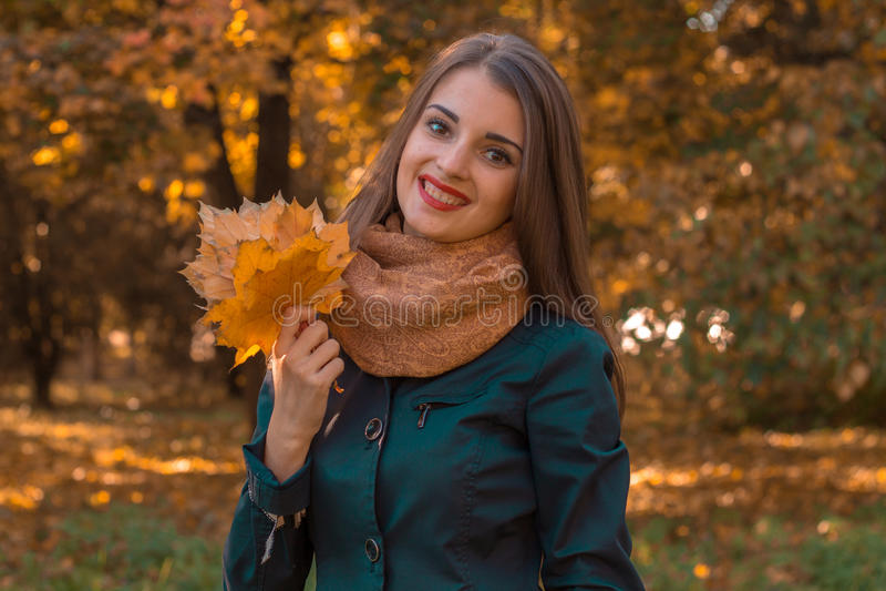 Het jonge meisje houdt in haar handbladeren die zich in de herfstpark bevinden stock fotografie