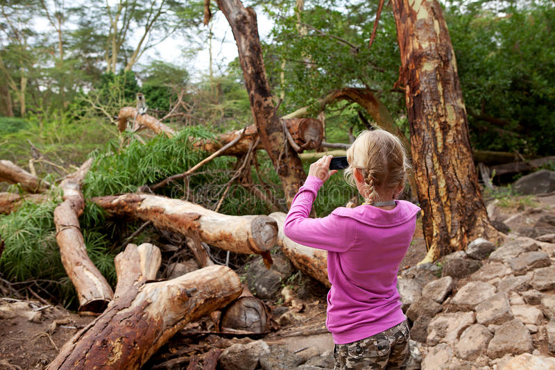 Het jonge meisje neemt foto op safari in Kenia royalty-vrije stock afbeelding