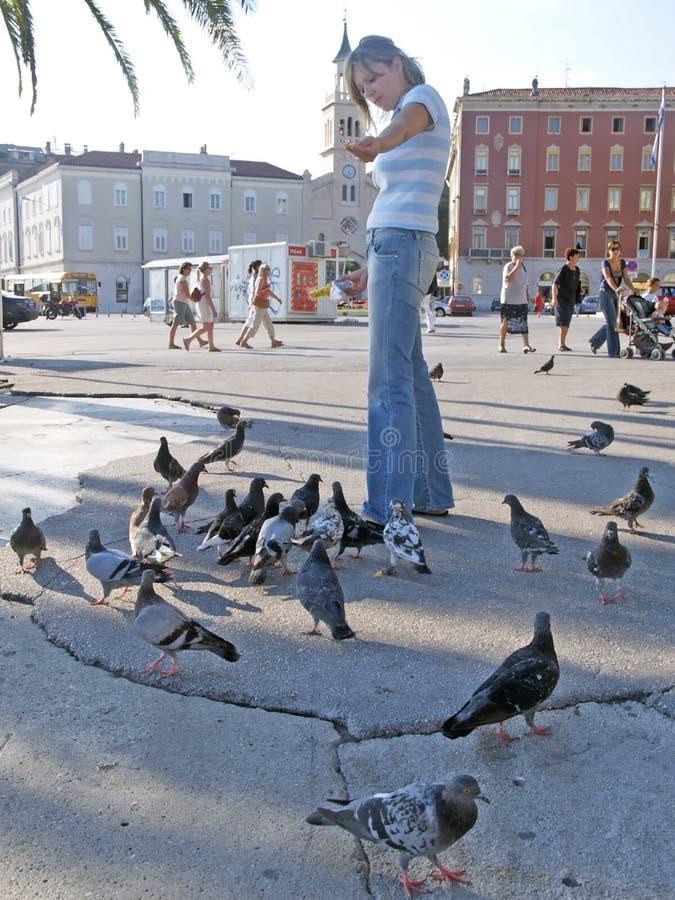 Het jonge meisje voedt de duiven op de straat stock afbeelding