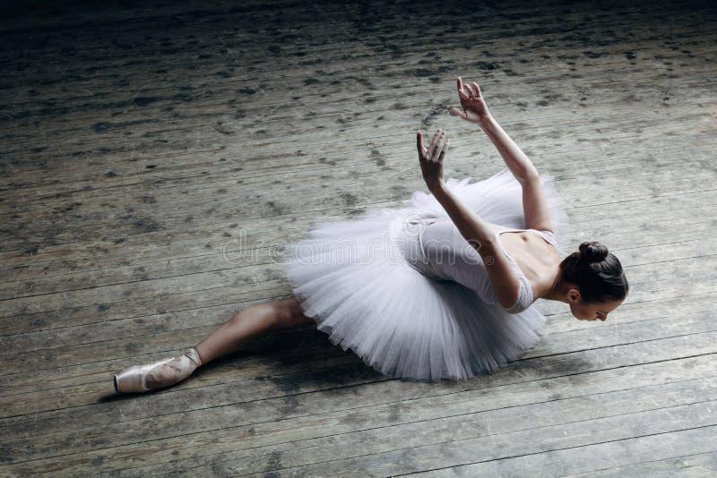 Het jonge mooie ballerina stellen in studio stock fotografie