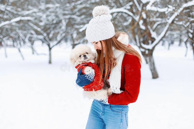 Het jonge mooie meisje in de warme winter kleedt spelen met een puppy stock afbeelding