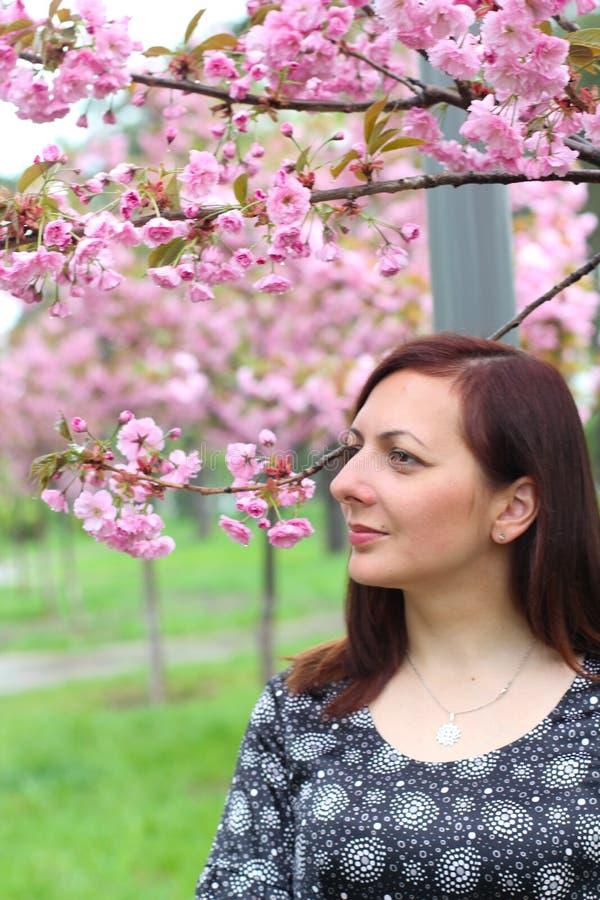 Het jonge mooie meisje met lang blond haar geniet van de schoonheid van de lenteaard dichtbij de tot bloei komende sakuraboom stock foto