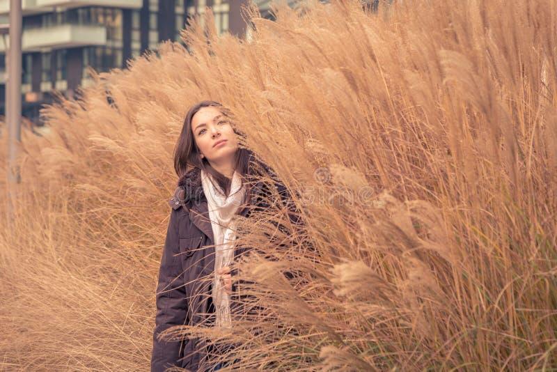 Het jonge mooie meisje stellen op een droog grasgebied royalty-vrije stock afbeelding