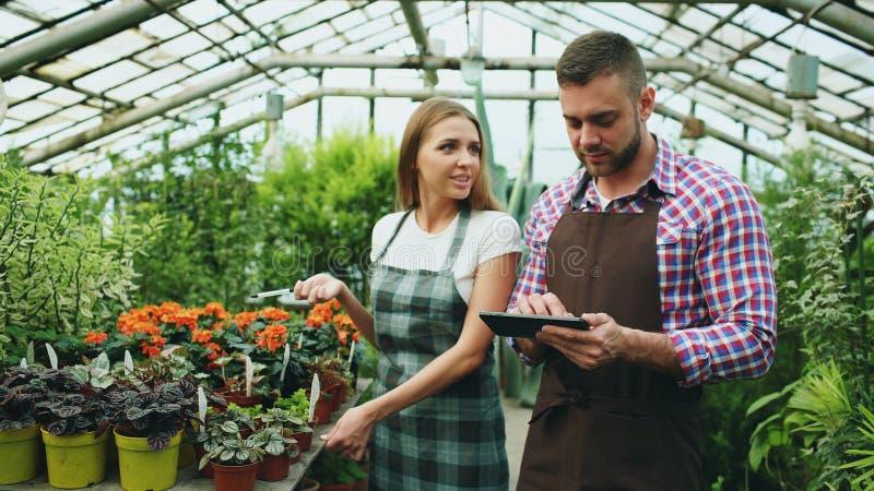 Het jonge paarwerk in tuincentrum Aantrekkelijke man cheking bloemen en vrouw die tabletcomputer met behulp van tijdens binnen he royalty-vrije stock foto