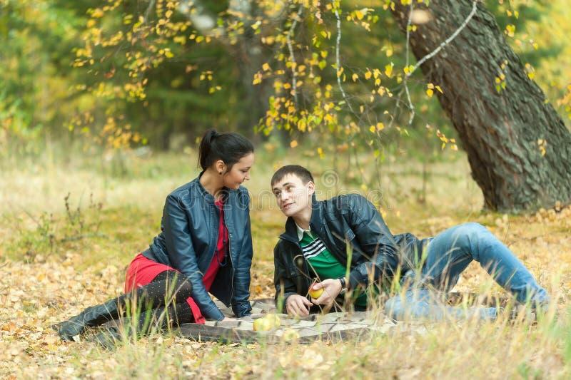 Het jonge romantische paar zit op plaid De herfstpicknick royalty-vrije stock foto's