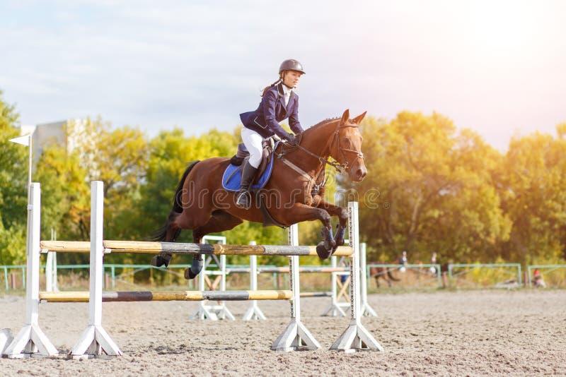Het jonge ruitermeisje op paard toont de springende concurrentie stock fotografie