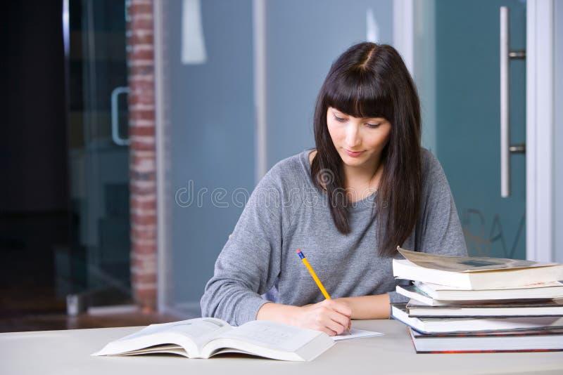 Het jonge vrouw bestuderen stock foto