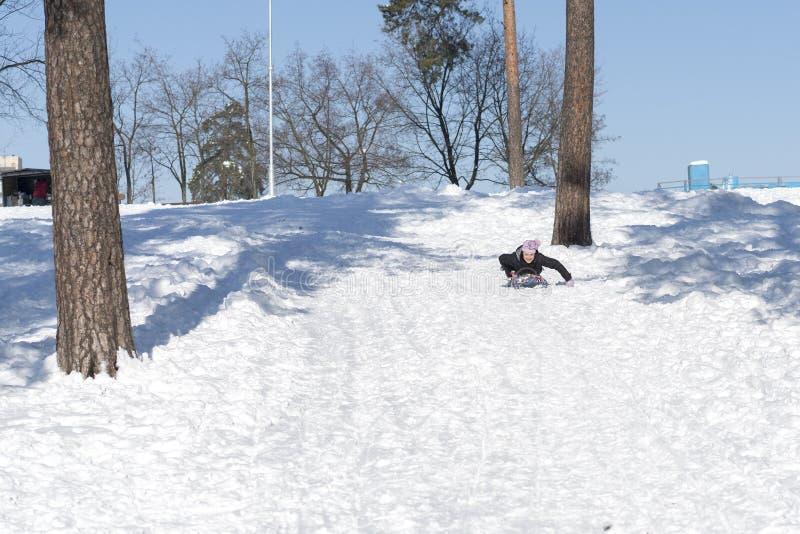 Het jonge vrouw sledding in sneeuw het lachende meisje in de winterkleding daalt op sleeën onderaan de heuvel stock fotografie