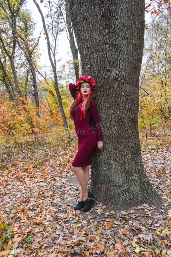 Het jonge vrouw stellen in de herfst stock foto's