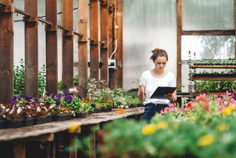 Het jonge werk van de vrouwenbloemist in tuin royalty-vrije stock foto's