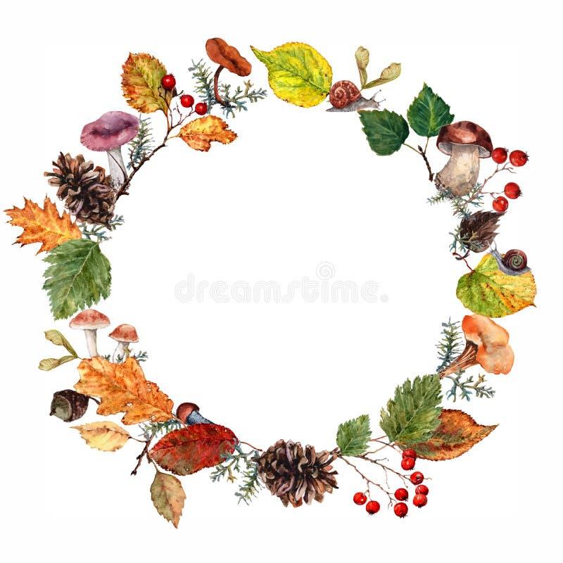 Het kader van bladeren, bessen, paddestoelen en takjes schikte in een cirkel op het de herfstthema waterverf op witte achtergrond stock illustratie