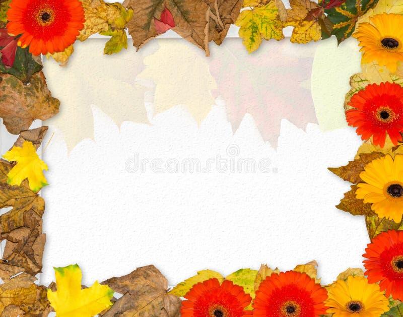 Het kader van de de herfstfoto stock foto