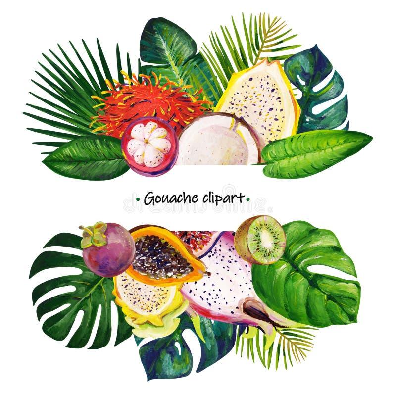 Het kader van de gouachezomer met gemengde tropische bladeren en vruchten vector illustratie
