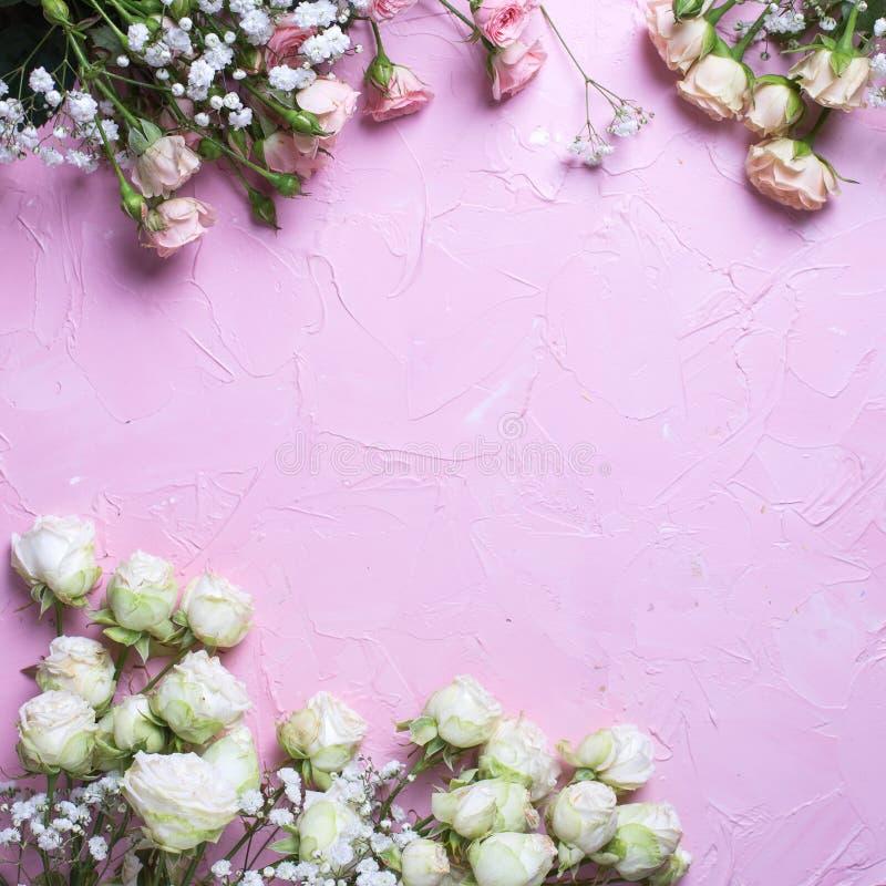 Het kader van verse witte gypsofila en wit nam bloemen op roze geweven achtergrond toe royalty-vrije stock foto's
