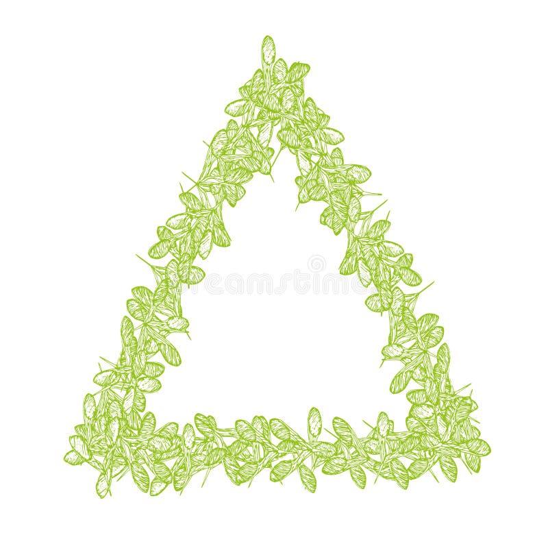 Het kaderdriehoek groen-01 van esdoornzaden vector illustratie