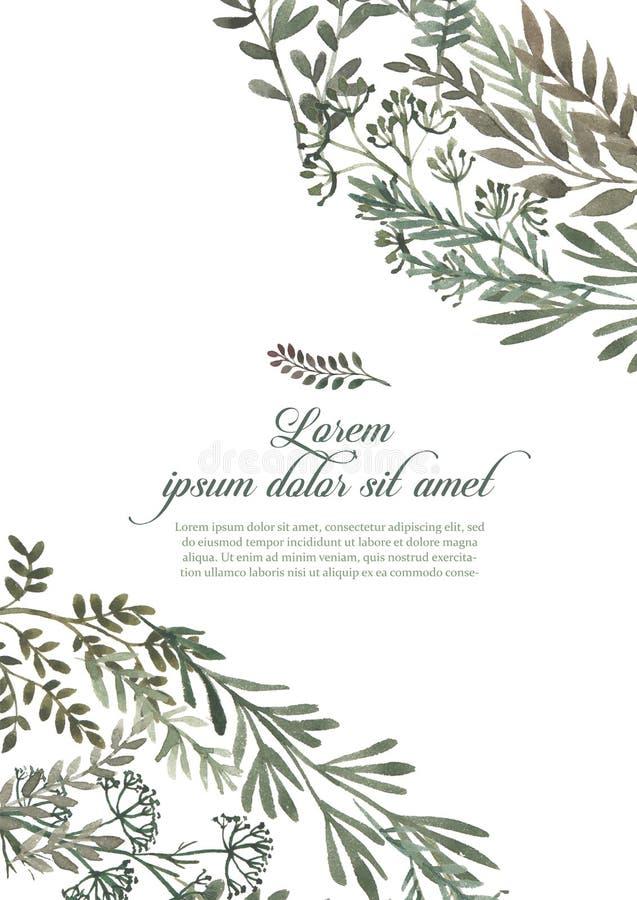 Het kaderreeks van de huwelijksuitnodiging, bladeren, waterverf, die op wit wordt geïsoleerd Geschetste kroon, bloemen en kruiden royalty-vrije illustratie