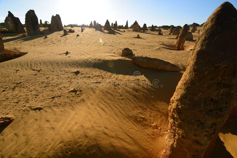 Het kalksteenvormingen van de toppenwoestijn Nambung Nationaal Park cervantes Westelijk Australië australië stock foto's