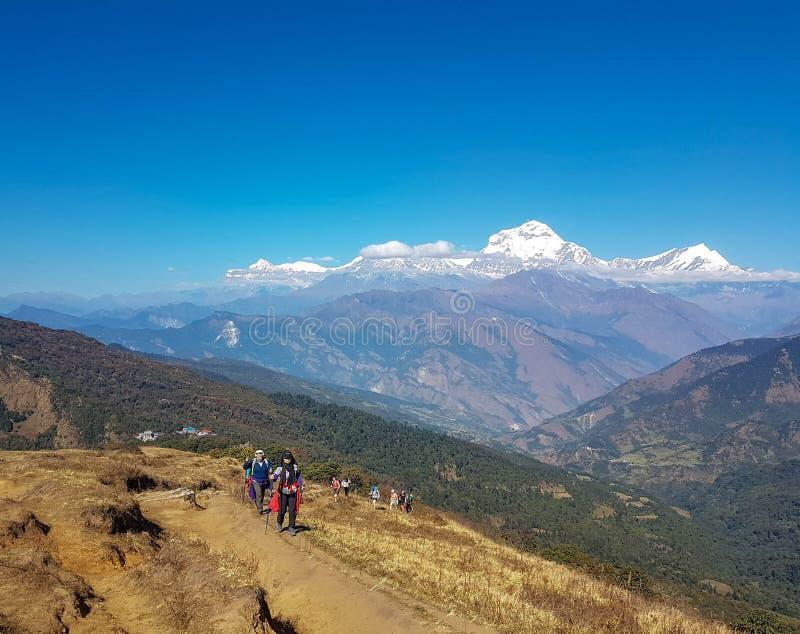 Het Kamp van de Annapurnabasis wandelingstrek, Himalayagebergte, Nepal November, 2018 Panorama van Dhaulagiri-Bergketen Wandelaar royalty-vrije stock afbeelding