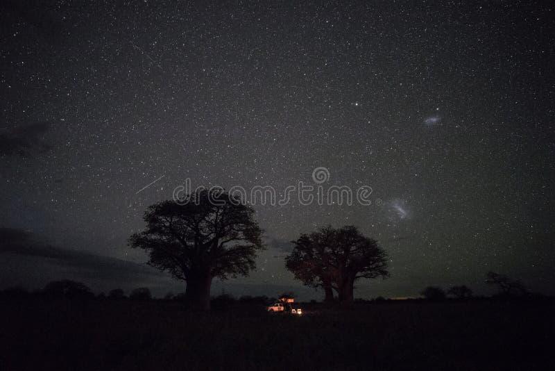 Het kampeerterrein van de Bainesbaobab bij nacht royalty-vrije stock foto's