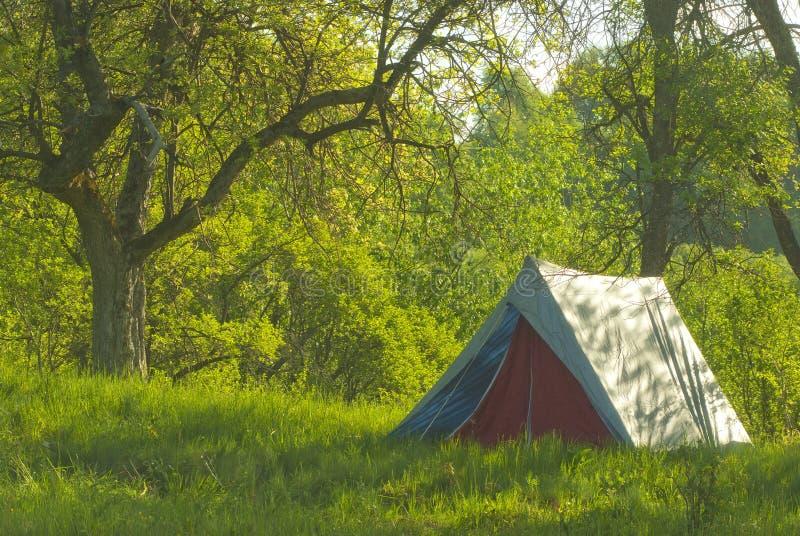 Het kamperen royalty-vrije stock afbeelding