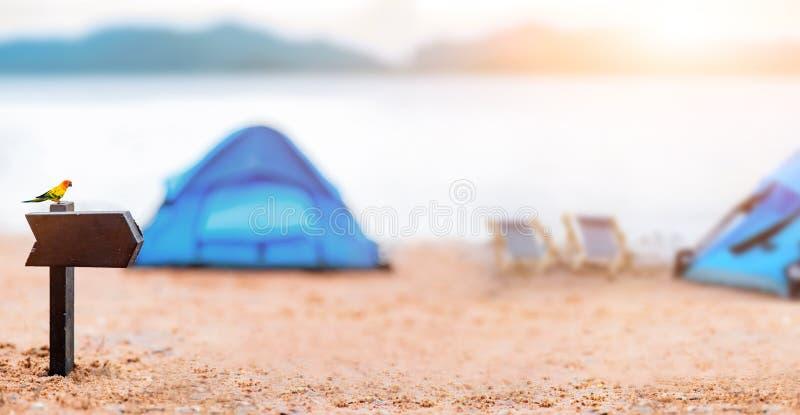 Het kamperen en het gebied van het tentteken bij natuurreservaat stock fotografie
