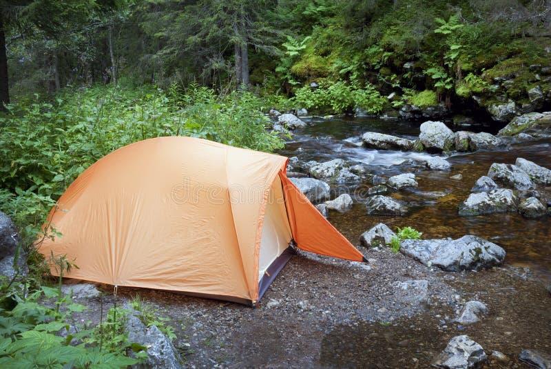 Het kamperen in het Bos royalty-vrije stock foto